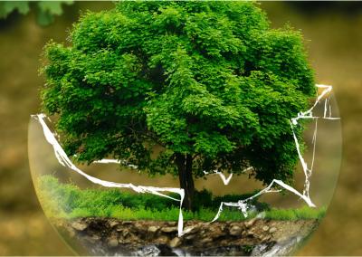 ekologia_baner
